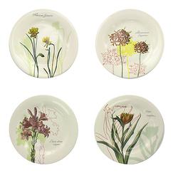 4 Littles Plates Herbarium of the King