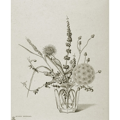Field flowers in a glass (autumn) - Hasegawa
