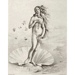 Birth of Venus. Fragment - Botticelli