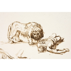 Lion approaching a corpse - Rembrandt