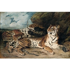 Study of two tigers, also known as Young Tiger playing with his mother