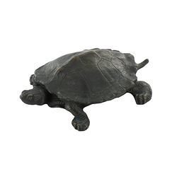 Turtle Barye - Bronze
