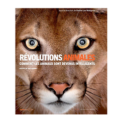 Révolutions animales. Comment les animaux sont devenus intelligents