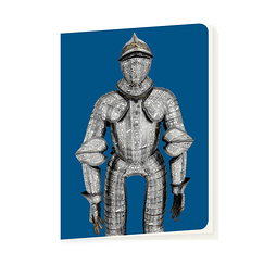 Notebook Dolphin's armor