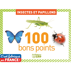 Insects and butterflies - 100 good points