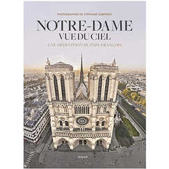 Notre-Dame from the sky. A meditation by Pope Francis