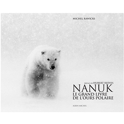 Nanuk The Polar Bear Big Book
