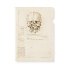 Da Vinci Clear File Study of a skull - A4