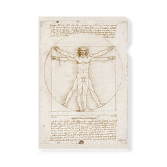 Leonardo da Vinci Clear file - The Vitruvian Man - A4