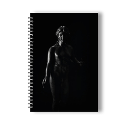 Apollon citharède notebook by Nikos Aliagas