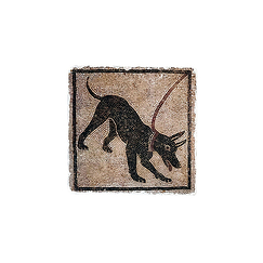 Coaster Dog Pompeii - Studio Vertu Europe