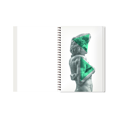 Michelangelo - Slaves Spiral notebook