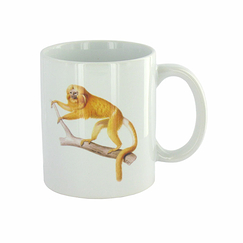 Monkeys Mug - The Origins of the World, Darwin
