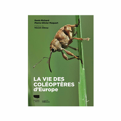 The life of beetles in Europe