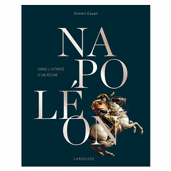 Napoleon. In the intimacy of a reign