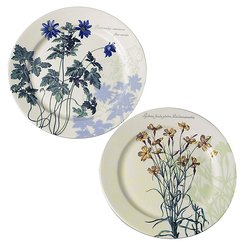 The King's Herbarium - 2 Coasters