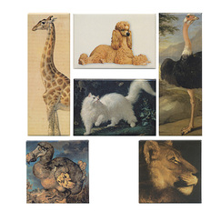 "Set of 6 magnets ""Animal beauty"" exhibition"