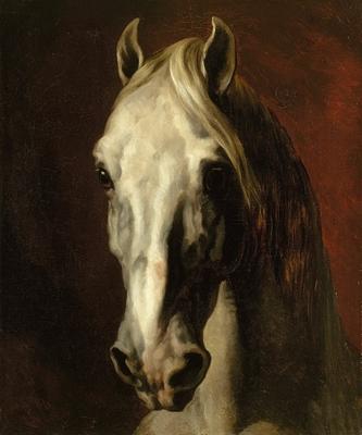 Cheval Tete tête de cheval blanc | boutiques de musées