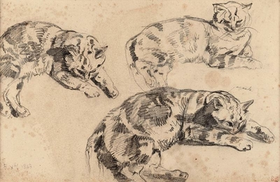 Three Studies of Cats