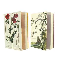 "Set of 2 ""Louis XIV Herbarium"" Notebooks"