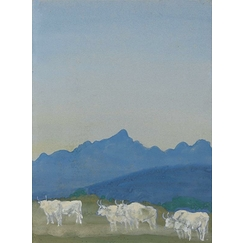Three pairs of white bulls on a mountain landscape