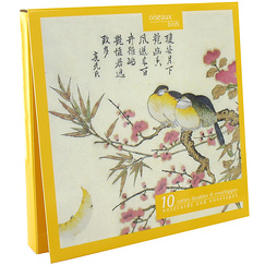 10 Notecards and envelopes Birds