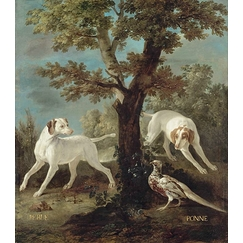 Perle and Ponne, dogs from the pack of Louis XV oudry