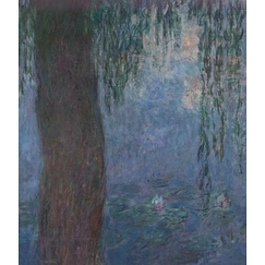 The Water Lilies: Morning with Willows