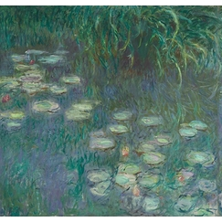 The Water Lilies: Morning