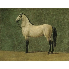 "Napoleon 1st's horse ""The Familiar\"""