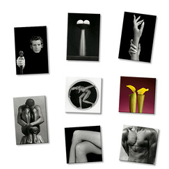 8 Magnets Mapplethorpe