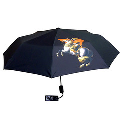Napoleon Umbrella