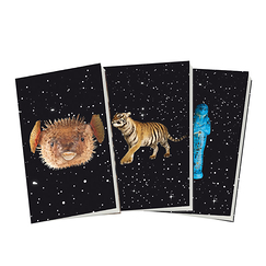 3 carnets Constellations Noir