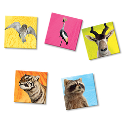 5 Magnets Animaux