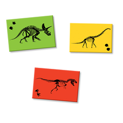 3 Magnets Dinosaures