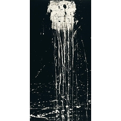 The dragon king's daughter waterfall - Pat Steir