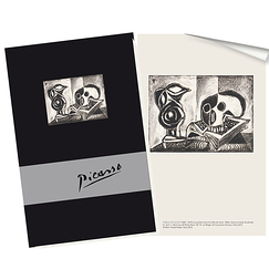 Picasso - Notebook